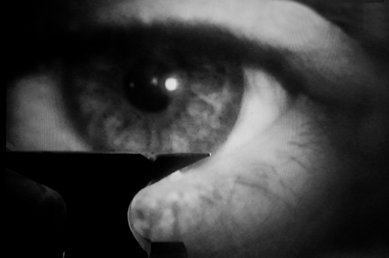 Os Olhos de Bergman