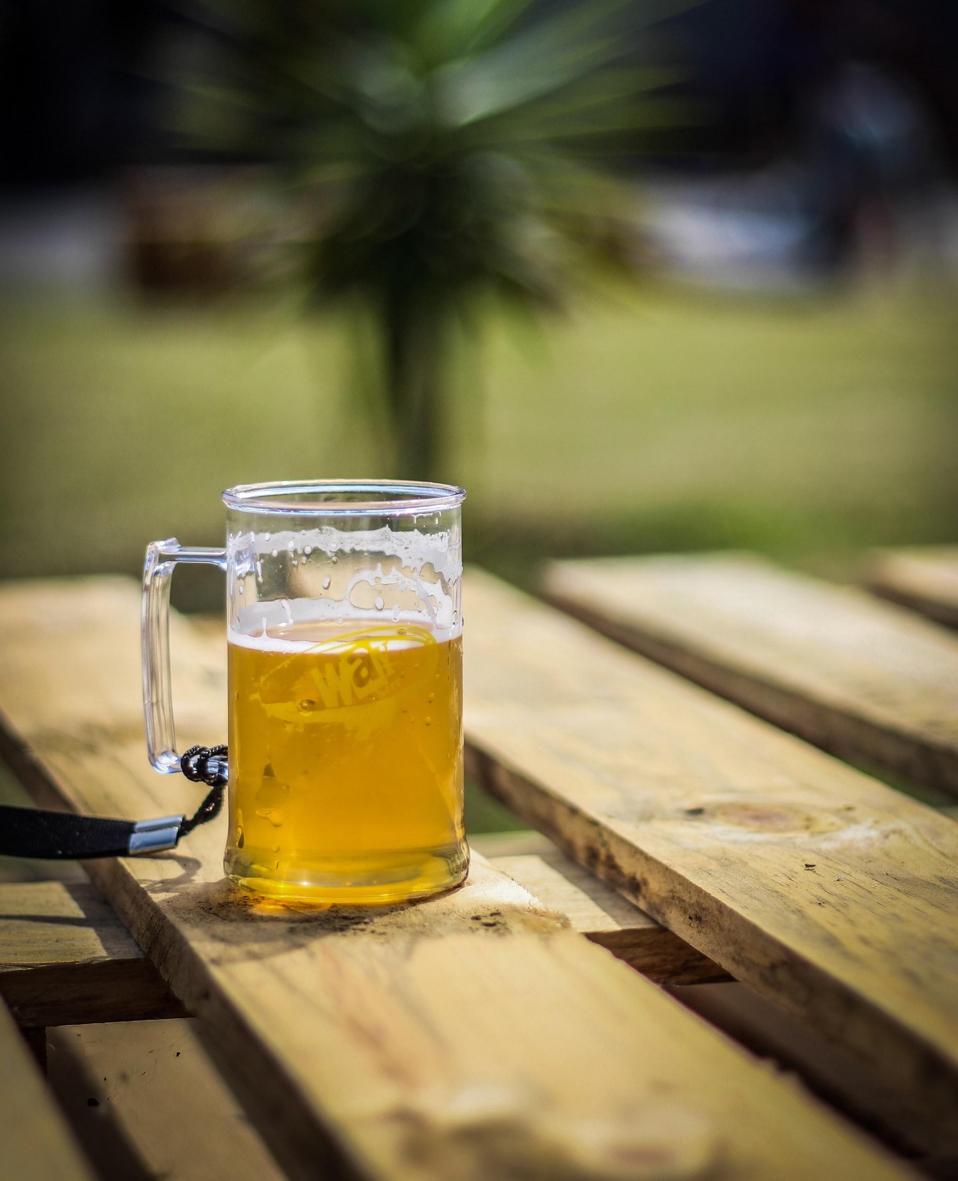 Festa Junina Cervejeira