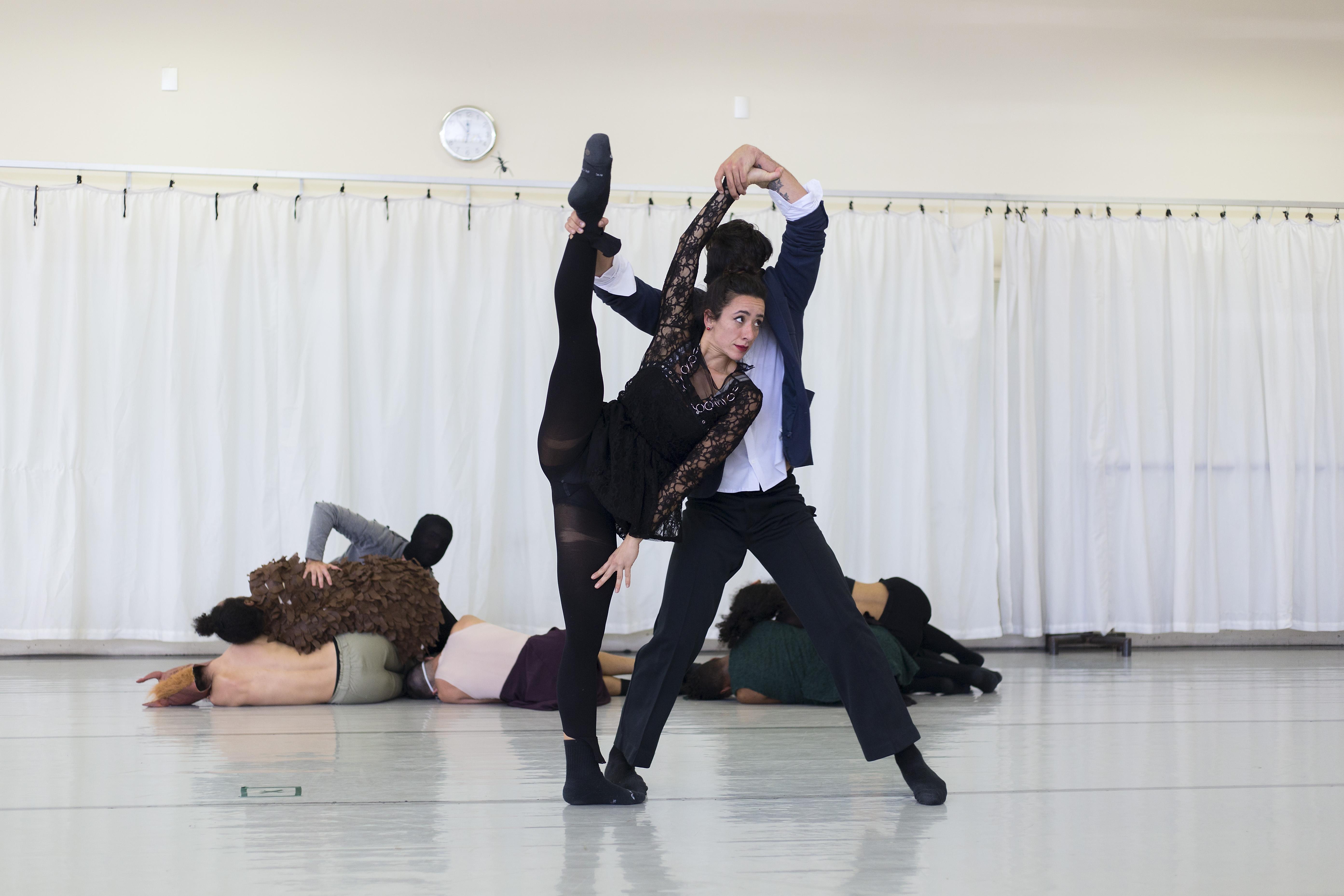 Dança: Plataforma Novos Criadores